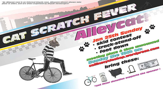 cat_scratch_fever_alleycat