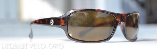 Optic Nerve sunglasses