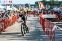sea_otter_2014_cx-13