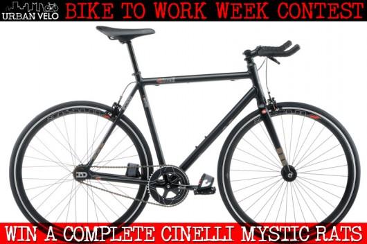 mystic_rats_contest1