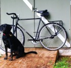 I Love Riding in the City – Dr. Hank