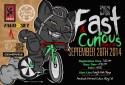 FastCuriousCat (1)