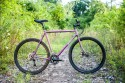 surly_straggler-1