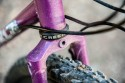 surly_straggler-3