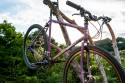 surly_straggler-5